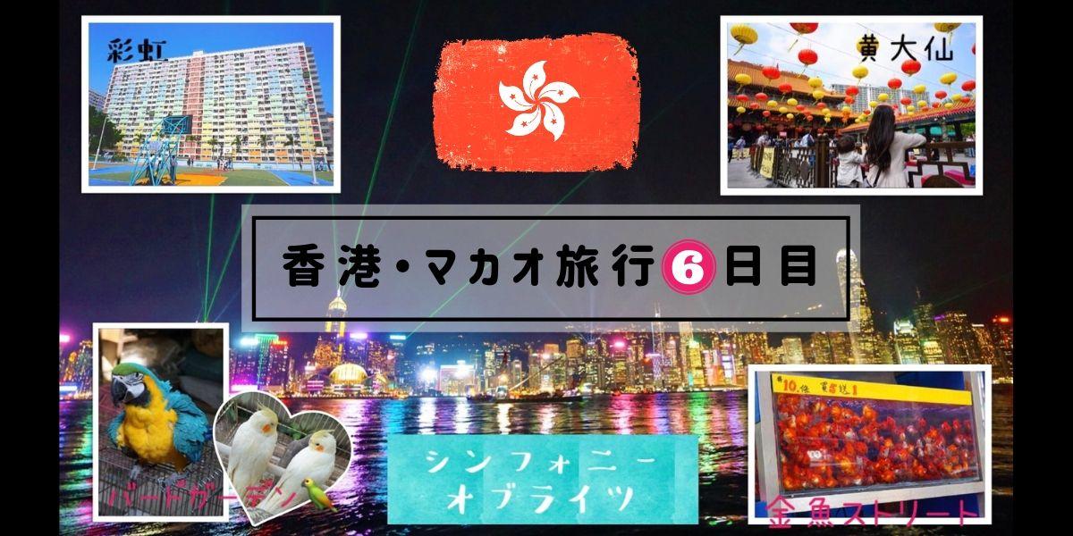 子連れ香港・マカオ旅行6日目【彩虹邨→黄大仙→太子-旺角→シンフォニーオブライツ】